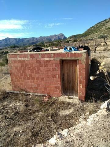 imagen 4 de Venta de finca con casa rural en Alicante