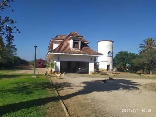 imagen 5 de Venta de finca con vivienda en Chiclana