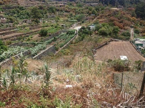 imagen 1 de Venta de finca en Tenerife
