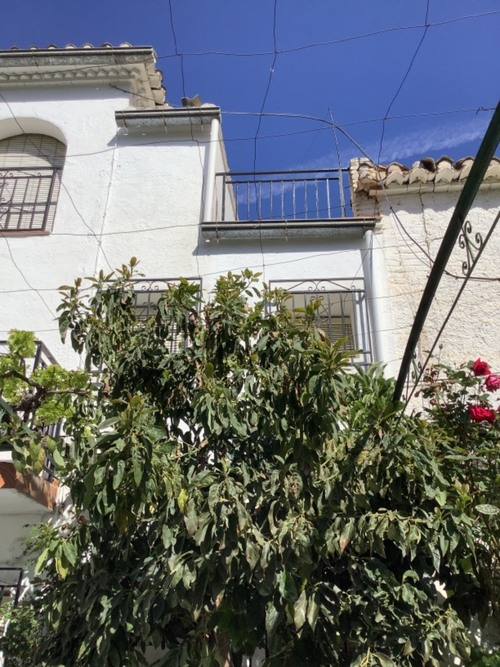 imagen 19 de Casa en Monachil