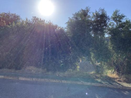 imagen 3 de Solar en Dudar