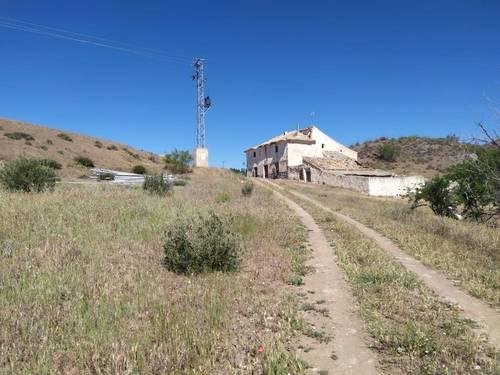 imagen 10 de Finca para pistachos 52 hectáreas Granada