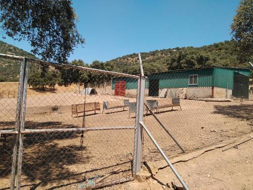 imagen 12 de Vivir en Sierra Morena