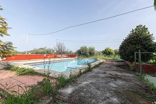 imagen 1 de Casa de campo con arboles frutales , olivos y piscina
