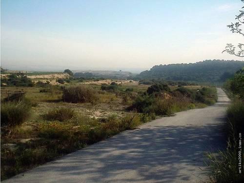 imagen 2 de Guardamar del Segura.