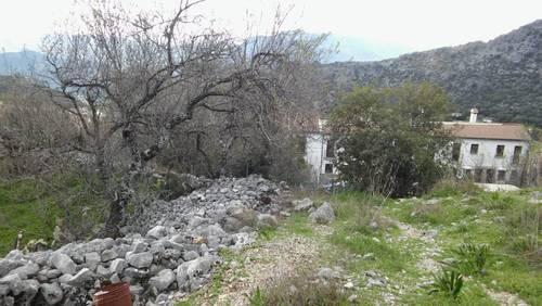 imagen 5 de LOS CORRALES