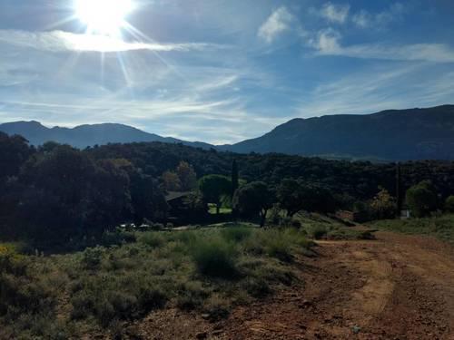 imagen 2 de Cortijo Andaluz y Bungalow en Málaga