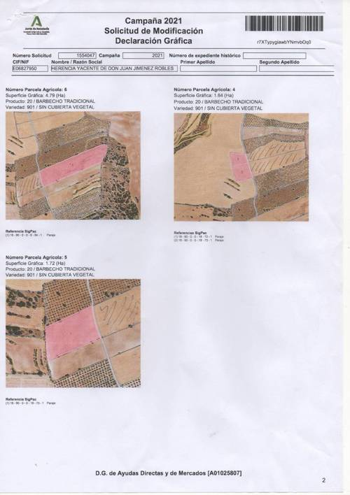 imagen 1 de FINCA AGRICOLA ZONA GUADAHORTUNA