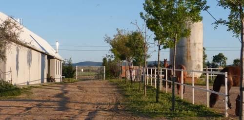 imagen 10 de TERRENO EN VENTA EN CARRETERA TO-3221