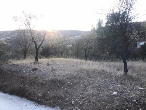 imagen 2 de TERRENO