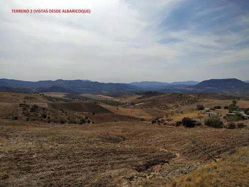 imagen 6 de Terrenos con Olivos en Álora/Valle de Abdalajis